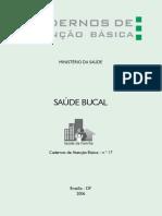 CAB 17 Saude Bucal