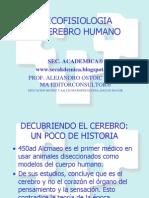 2011 - El Cerebro Humano - Psicofisiologia 2011 i