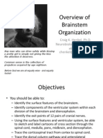 Overview of Brainstem Org 8.24.11