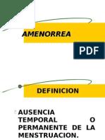 Amenorrea_ginecologia