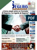 Periodico El Reporte Seguro Edición 12