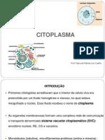 5ª aula - citoplasma. liso e peroxissomo
