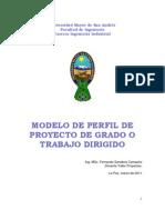 Modelo de Perfil Proyecto