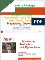 Anatomía  fisiología  Rinosinusal...