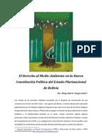 El Derecho al Medio Ambiente en la Nueva Constitución Boliviana