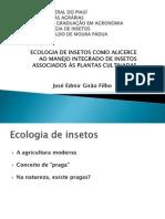 Seminário ecologia de insetos