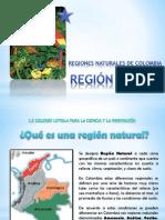 Region Andina Presentacion