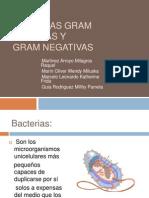 Bacterias Gram Positivas y Gram Negativas SEMINARIO 2010
