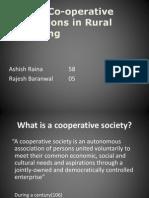 Cooperative Institutions
