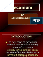 Meconium by Abhishek Jaguessar