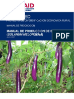 Manual de Produccion de Berenjena Final