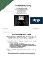 Feasibility Sample