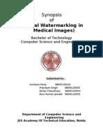 Synopsis Watermark