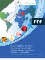Libro Bases Prospectivas