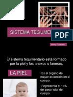 sistemategumentario-091201201913-phpapp01