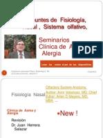 Fisiología Nasal Sistema Olfativo