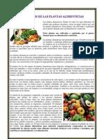 Beneficios de Las Plantas Alimenticias