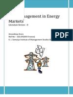 Risk Management Literature Review 3