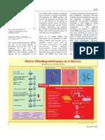 Matrix Metalloproteinases 2004