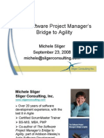 Agile - Bridge 2 Agility