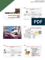 06 Diseno Organizacional Macro Estructura 2011 1 Alumno
