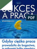 Witold Wójtowicz - Sukces a praca