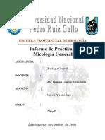 Prácticas de Micología General 2007-I