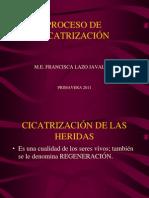 PROCESO DE CICATRIZACION