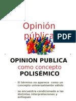 Opinion Publica Presentacion