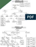 mapas conceptuales biología2