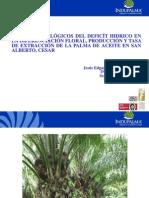 Efectos Fisiologicos déficit hídrico en La Palma de Aceite