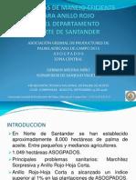 Prácticas de Manejo Eficiente Para Anillo Rojo en Norte de Santander
