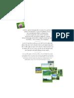 Annual Report 2010 a FINAL