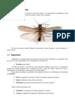Apostila_Entomologia_Geral