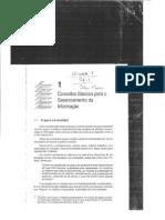 Administração dos Sistemas de Informação
