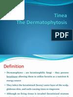 Tinea – The Dermatophytes
