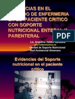 Evidencias en El Cuidado de Enfermeria en El Paciente Critico Con Soporte Nutricional Enteral y Parenteral