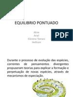 EQUILIBRIO PONTUADO