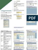 Guia SAP 5 Reporte Presupuestal