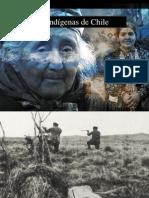 pueblosindigenas-andrssalassez-110427225938-phpapp02