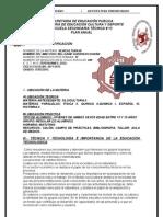 Plan Anual de Tec. 2011