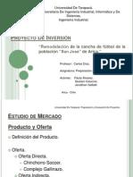 Proyecto Inversion Canchas Sinteticas