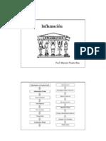 KINFIS0510120111_Inflamación - Clase 1