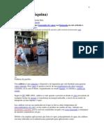 Caldera Maquina Termica, 23,08,11