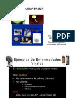 Virologia Basica - Evelia Quiroz