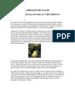 CUIDADOS_Arboles frutales