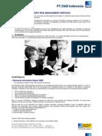 2  Credit Risk Management Services
