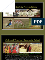 Affordable Cultural Tourism Tanzania Safari, Zanzibar Island Beach Holidays, Mount Kilimanjaro Climbing, Kenya Wildlife safari, Serengeti Wildebeest   Migration, Serengeti Hot Air balloon Safari, Ngorongoro Conservation Area Crater Safari, Migration of the Wildebeest Maasai Mara Game Reserve