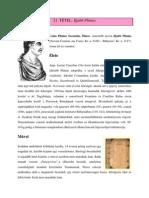 21. Ifjabb Plinius