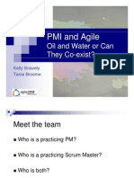 PMI+and+Agile+Presentation